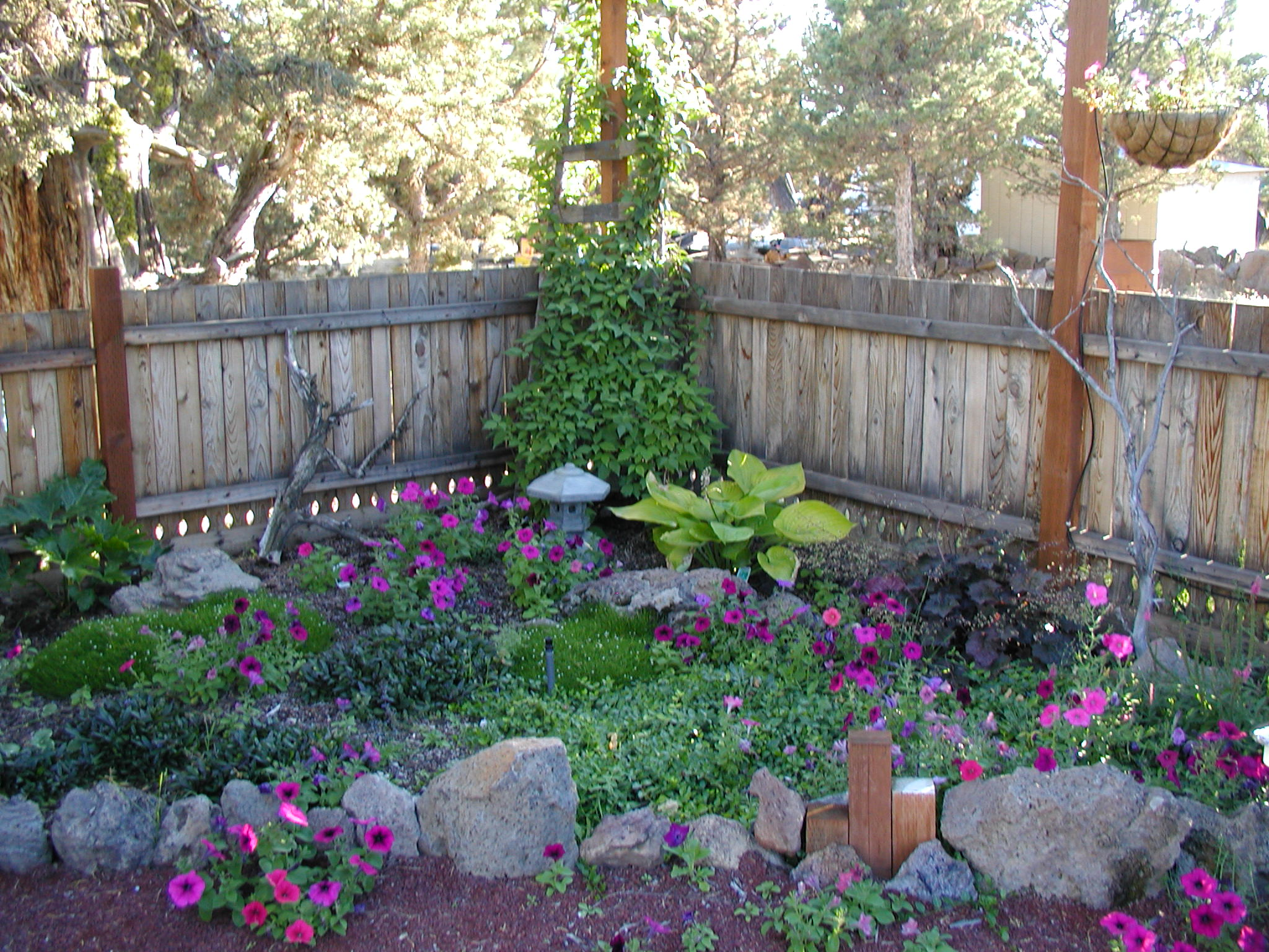 May | 2008 | Garden Beautiful on Shady Yard Ideas  id=83235