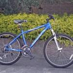 この時期だけだけと思うけど、自転車に嵌ろうかな?