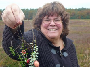 Anne holding up a cranberry vine