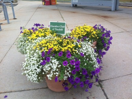Train station planters2015