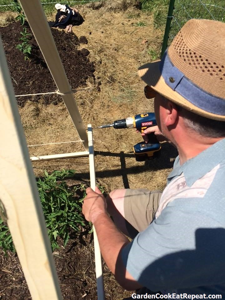 Building tomato support in the garden