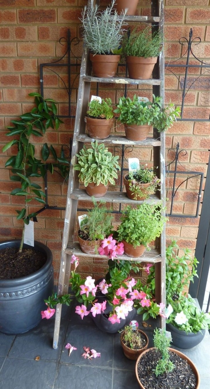 17 Best Ideas About Balcony Garden On Pinterest | Small Balcony inside The Best Ideas For Laurel Gardens Apartments