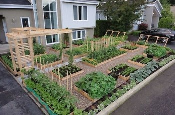 25+ Best Ideas About Vegetable Garden Design On Pinterest | Raised inside Vegetable Garden Design
