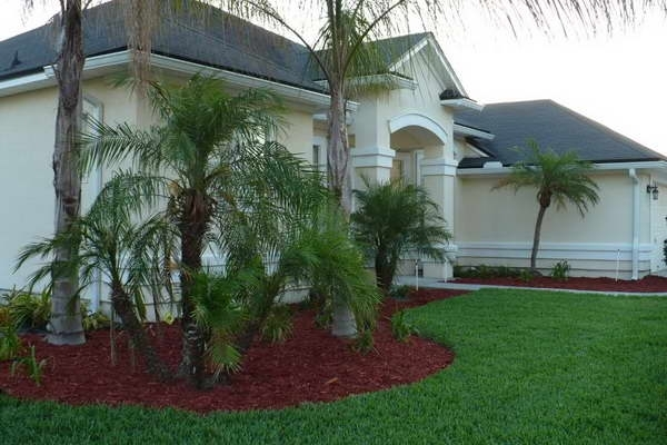 Tree Landscaping Ideas Front Yard: Tree Landscaping Ideas With with Landscaping Ideas Front Yard Palm Trees