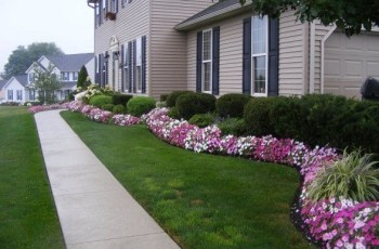 244 Best Images About Front Yard Of Florida On Pinterest | Foxtail with Landscaping Ideas For Front Yard With Evergreens