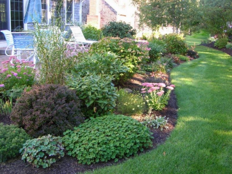 Landscape Design Ideas Zone 5