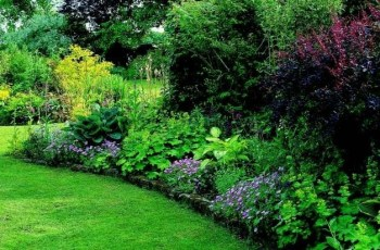 Triyae=Landscaping A Small Shady Backyard ~ Various Design intended for Garden Design For Small Shady Gardens
