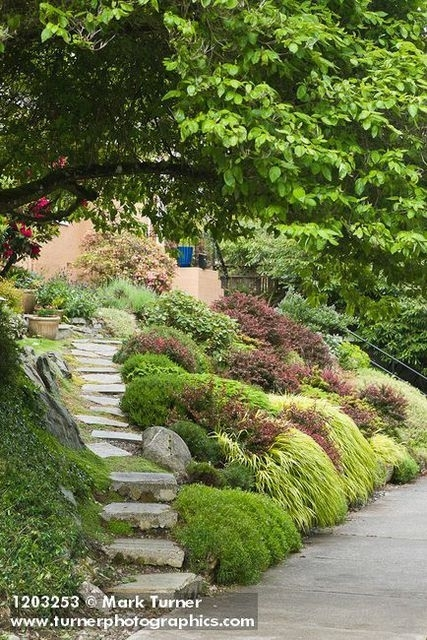 landscaping ideas front yard steep slope