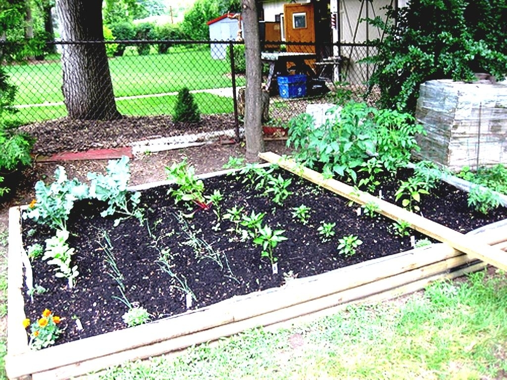 Simple Backyard Vegetable Garden Ideas - Garden Design