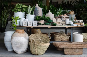 Sydney's Best Plant Nurseries pertaining to Garden House Cafe - Enfield Nsw