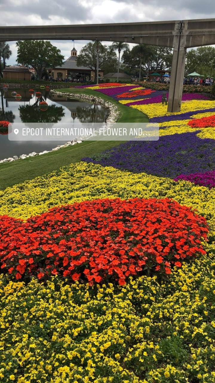 Instagram Stories Data Base - Saved Stories Near Epcot International throughout Flower And Garden Festival Instagram