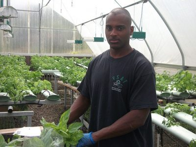 Hydroponic training for vets has led to entrepreneurship. Now specialty hydroponic startups might be eligible for microloans from the USDA.