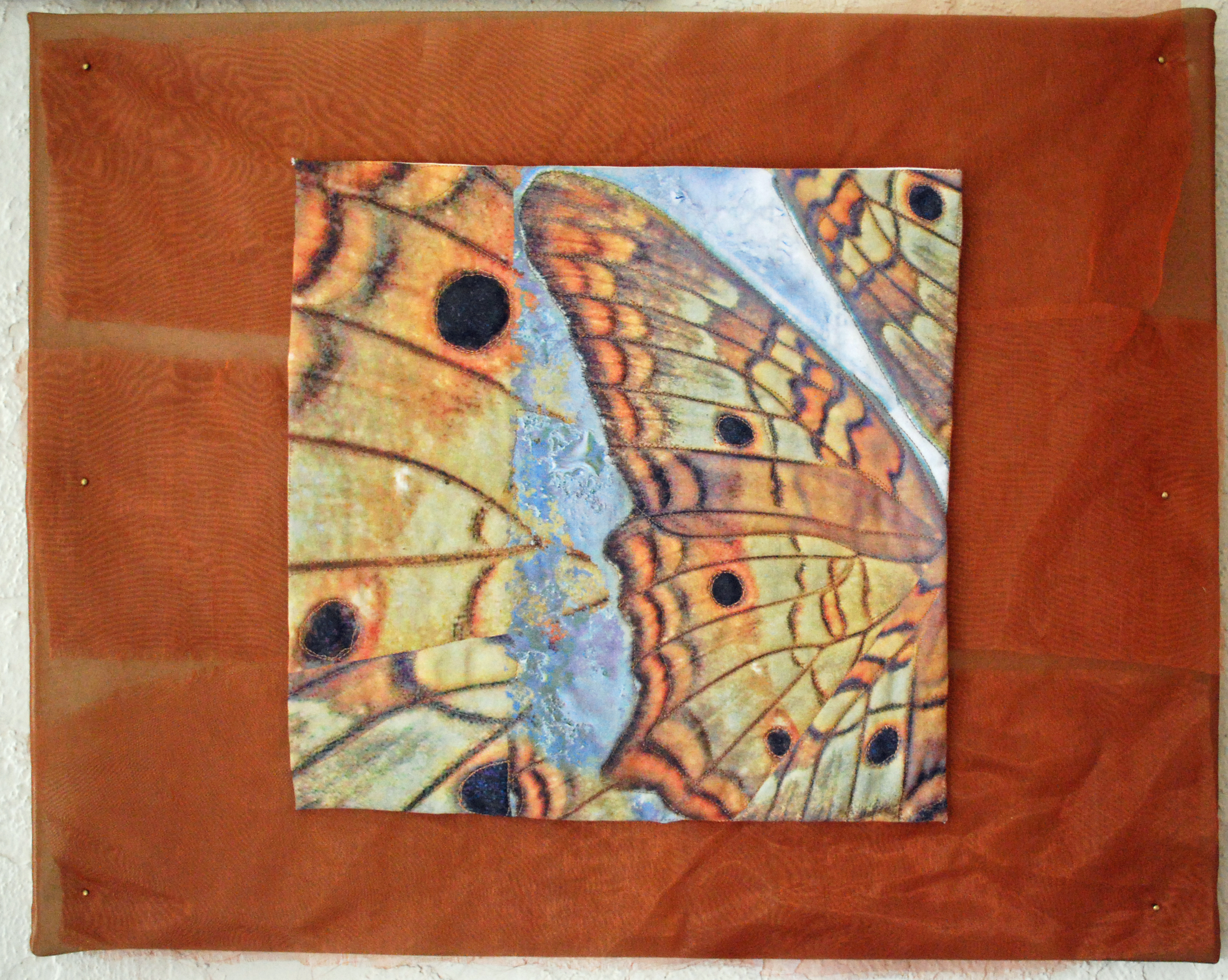 Gallery: butterfly art hanging