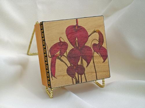 Masdevalia orchid box