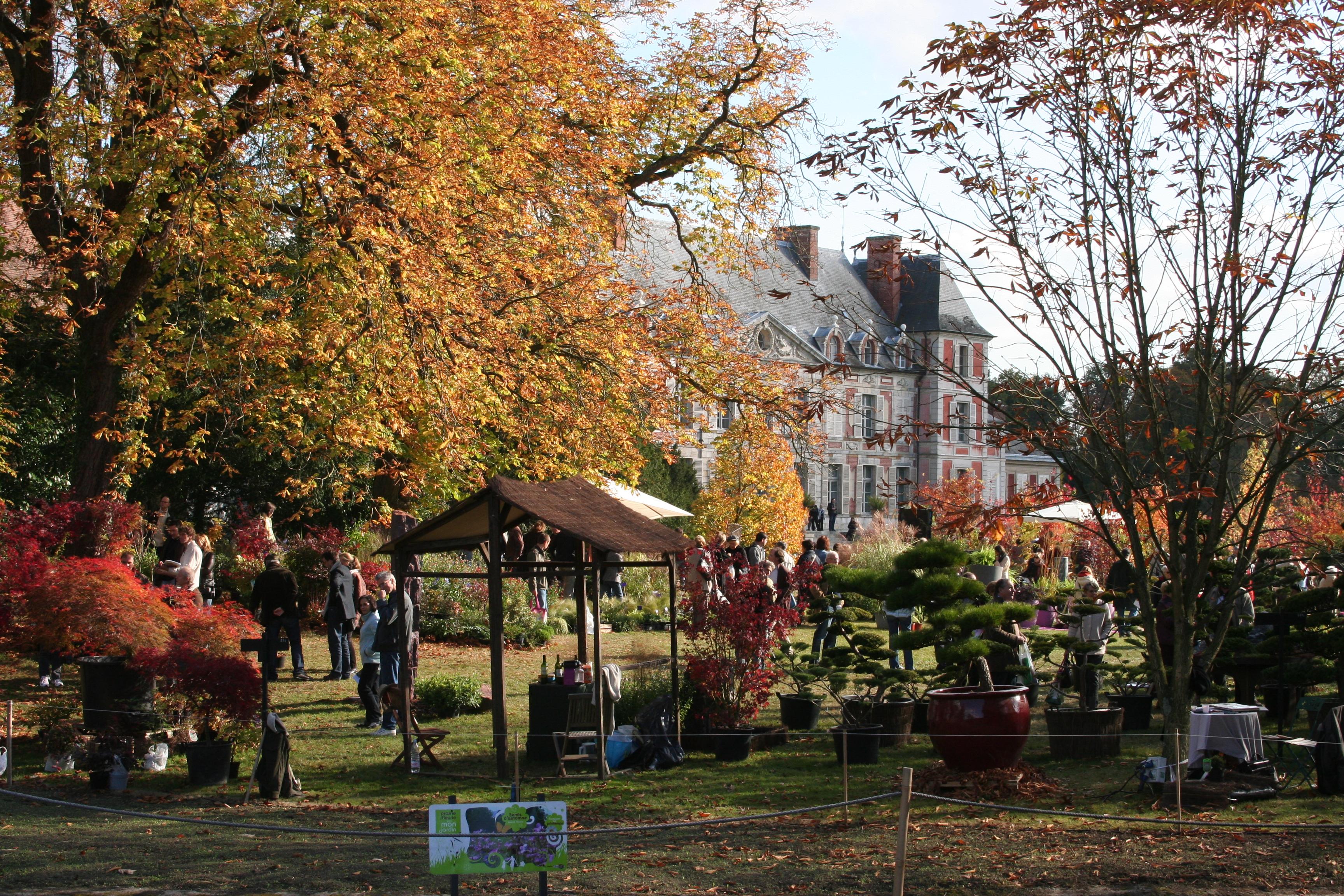 Autumn colour at the Chateau de Courson