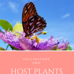 Pollinators and Host Plants