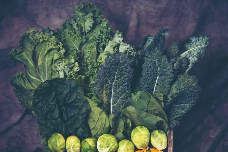 10 Vegetables To Plant Late Summer