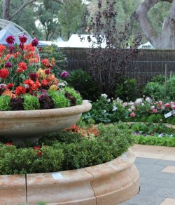 Mixed flowers & vegies in the award-winning Melville Rose Nursery & Gardens of Eden display garden