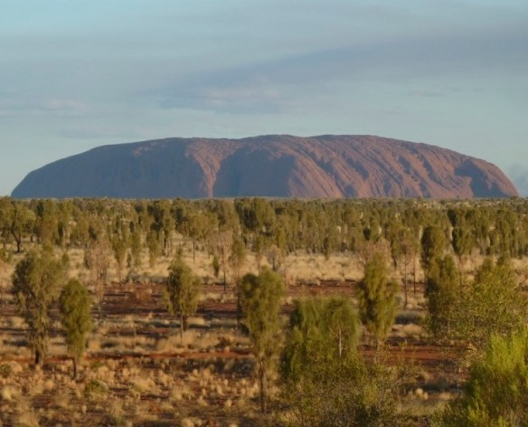 Uluru surrounded by an uncharacteristically green plain