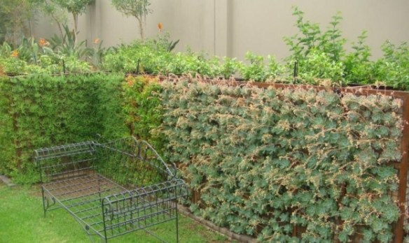 Gabion green wall be Badec Bros Deco, Pretoria, SA