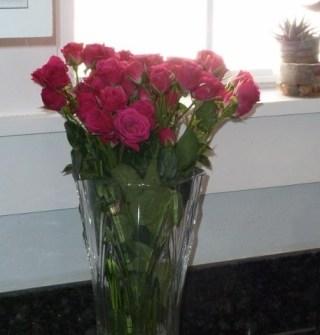 Maria-von-Brincken-pink-roses-on-counter-600x800-e1357342071291