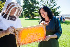 Doug Purdie, Director Urban Beehive shows Kate Faithorn, Director Public Engagement at the Royal Botanic Gardens and Domain Trust the honey