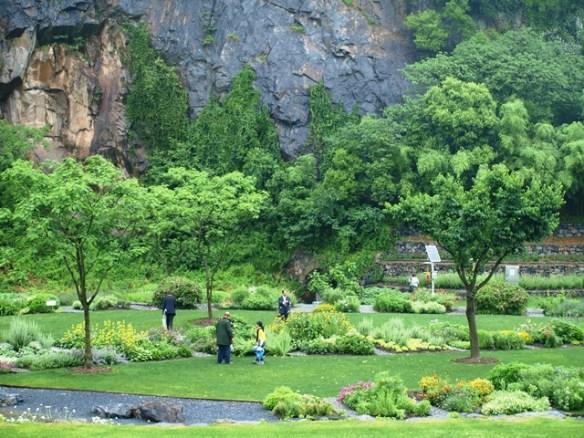 Shanghai-Chenshan-Botanical-Garden-6