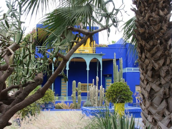 Jardin Majorelle. Photo Helen Young