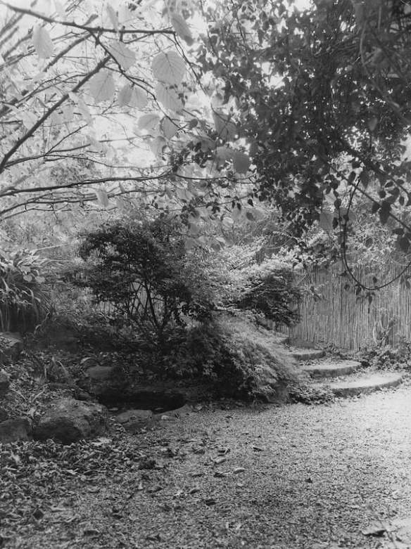 Curved stone-edged steps descend from the road ( Ellis Stones)