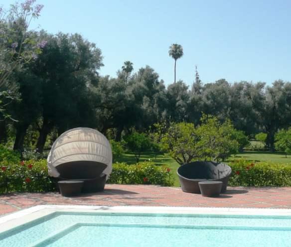 Hotel La Mamounia - Olive and citrus backdrop to pool
