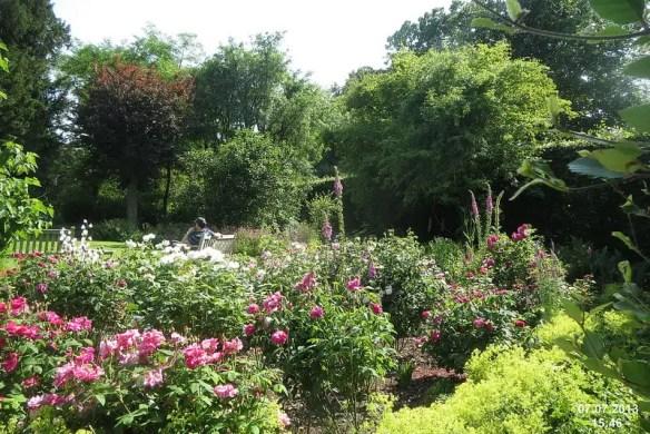 Garden at Chawton Photo davidshort