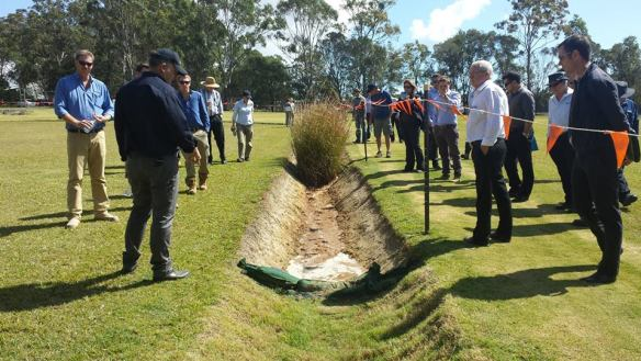 Turf being tested for erosion control
