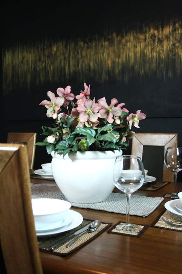 Potted Hellebore is an elegant table centrepiece
