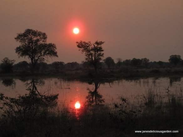 Sunsets (3)