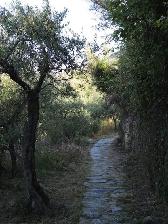 34 Cinque Terre Italy