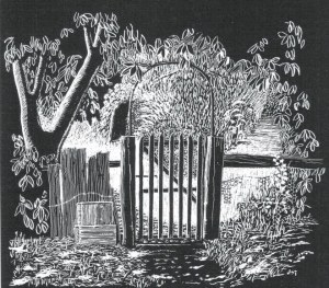 This Scraper board by Professor John Turner (1908-1991) faithfully records the rustic garden gate in Jean Galbraith's garden in west Gippsland in the 1980s. Image courtesy Sue Turner