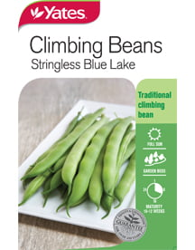 Stringless Blue Lake from Yates seeds