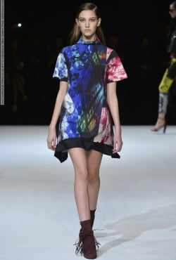 Just Cavalli (Fall-Winter 2014) R-T-W collection at Milan Fashion Week