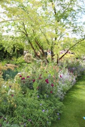 Chelsea Flower Show 2015 woodland garden Photo Fiona Ericsson