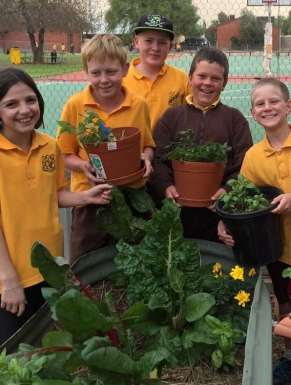 Finley Public School garden