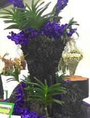 Middle East Floral Design Excellence Award purple floral arrangement