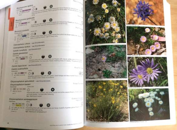 Inside: Australian Plants for Canberra Region Gardens