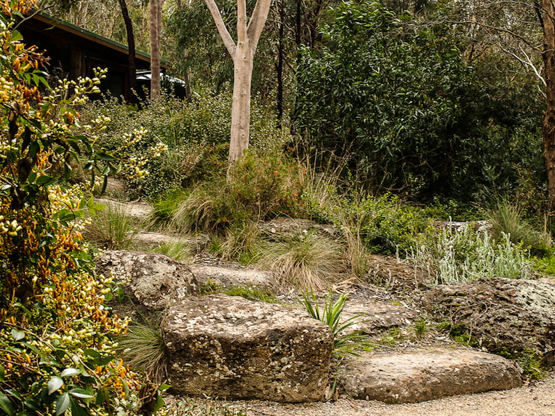 Making australian gardens with a sense of place gardendrum for Landscaping courses adelaide