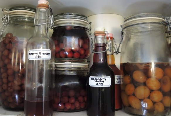 Alcohol from your garden harvest - another delicious way to preserve it