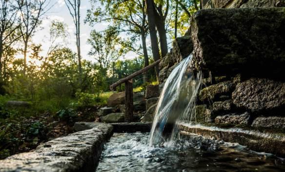 APLD Gold Award 2016 Hess Landscape Architects Inc. Project 'Philadelphia Farm to Forest'