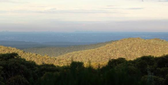 View from the Woodford Honey property - you can see all the way to the Sydney CBD