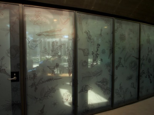 Engraved botanical illustrations on frosted glass moveable walls inside The Calyx, Sydney RBG