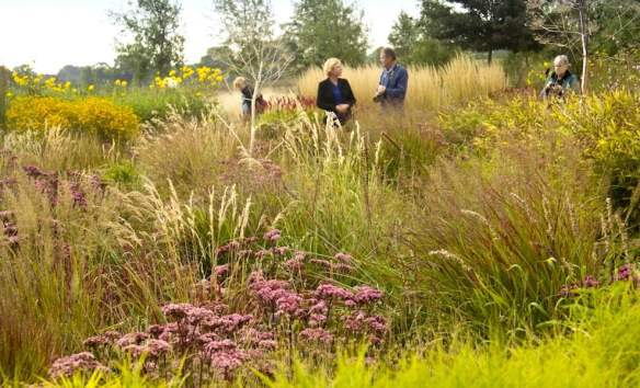 Liannes Siergrassen is a nursery with a beautifully-designed demonstration Prairie Style Garden