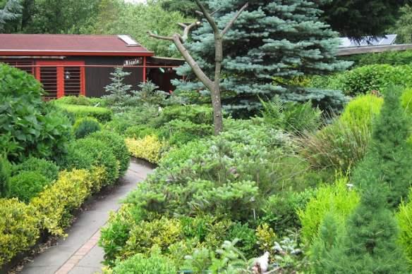 Japanese-style garden in Sloterdijkermeer in Amsterdam