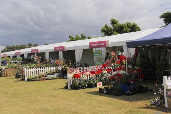 brisbane-international-garden-show-stalls
